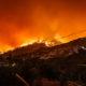 Black summer bushfire