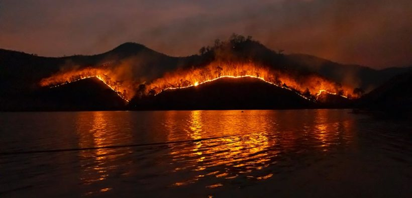 black saturday bushfire