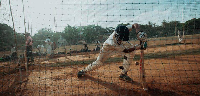 backyard cricket day