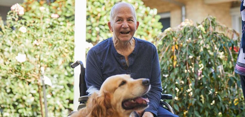 Dog as the best form of therapy for aged care residents