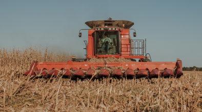 strengthening rural communities